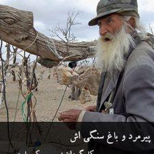 دانلود فیلم کوتاه پیرمرد و باغ سنگی اش